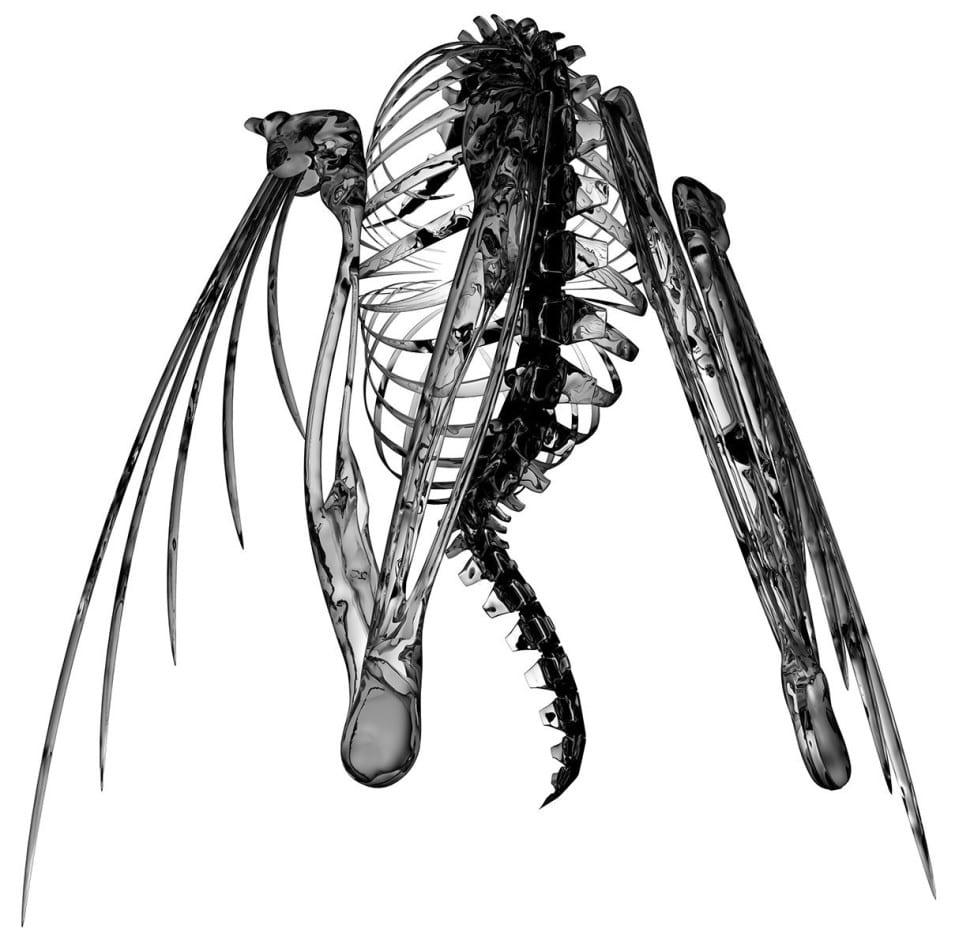 Lotic-Spider