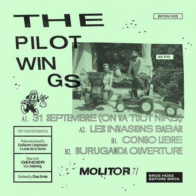 PILOTWINGS-5